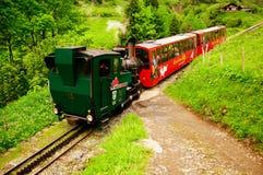 Treno a vapore. Immagine Stock