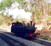 Treno a vapore con il driver fotografie stock