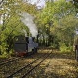 Treno a vapore di WLLR Immagine Stock