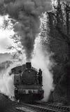 Treno a vapore mono Fotografia Stock