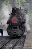 Treno a vapore a scartamento ridotto Fotografia Stock