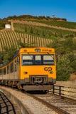 Treno in vigna Immagini Stock Libere da Diritti