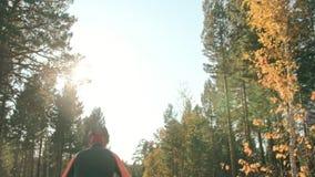 Trenować atlety na rolkowych łyżwiarkach Biathlon przejażdżka na rolkowych nartach z narciarskimi słupami w hełmie, Jesień zbiory