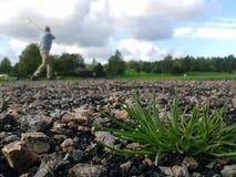 Trenować przy polem golfowym fotografia stock