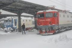 Trens congelados na estação de trem Imagem de Stock