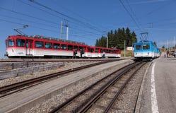 Trens das estradas de ferro de Rigi na montagem Rigi Foto de Stock Royalty Free