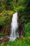 Trentino - водопад в Val di Единственн Стоковое Фото