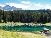 Trentino Италия Lago di Carezza Стоковая Фотография