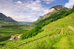 Trentino stock fotografie