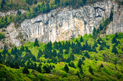 Trentino Alto Adige, Alps detail Royalty Free Stock Photo