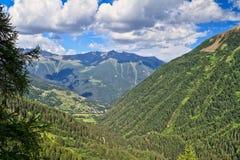 Trentino - Pejo valley Royalty Free Stock Photos