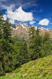 Trentino - Pejo valley on summer Stock Photo