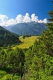 Trentino - Val di Pejo Foto de Stock Royalty Free