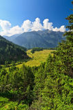 Trentino - Val di Pejo Royalty Free Stock Photo