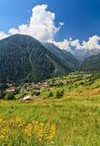 Trentino - Val di Pejo, Italië Stock Afbeeldingen