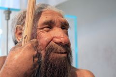 A realistic reproduction of a prehistoric old man Stock Images