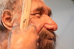 A realistic reproduction of a prehistoric old man Stock Photo