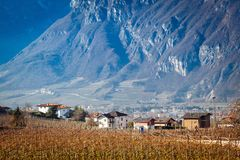 Trento suburbs with mountain background Stock Image
