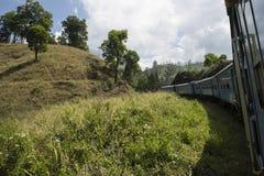 Trenuje w herbaciane plantacje Ella, Sri Lanka Zdjęcia Royalty Free