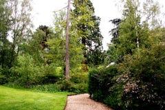 Trenza en el jardín Foto de archivo libre de regalías