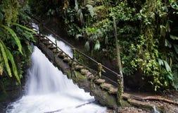 Treppe in den Wasserfall Lizenzfreie Stockbilder