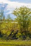 Treppe in der Natur lizenzfreie stockfotografie