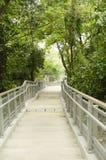 Treppe, die unten zum Park geht Lizenzfreies Stockbild