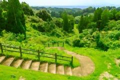 Treppe im Berg Lizenzfreie Stockbilder