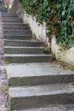 Treppe im Freien in der Perspektive Treppenhaushintergrund Konkretes Treppenhaus an der Stadtstraße Treppen im Park stockfoto