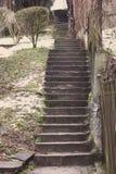 Treppe im Freien in der Perspektive Treppenhaushintergrund Konkretes Treppenhaus an der Stadtstraße Treppen im Park lizenzfreie stockbilder