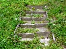 Treppe im Gras Stockfoto