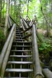Treppe im Wald Stockfotos