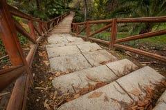 Treppe und Holzbrücke Stockbilder