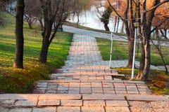 `` Treppe von Athleten `` im Stadtpark Lizenzfreies Stockbild