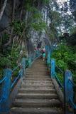 Treppe zu Tiger Temple Lizenzfreie Stockfotografie