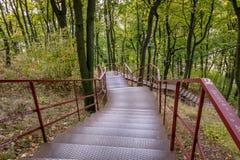 Treppe zum Herbst Stockfoto