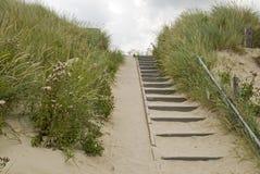Treppen in den Dünen stockfoto
