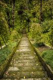 Treppen, die unten gehen Lizenzfreies Stockbild