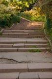 Treppen im Garten Lizenzfreie Stockfotos