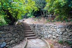 Treppen im Park lizenzfreie stockbilder