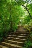 Treppen im Park Stockfoto