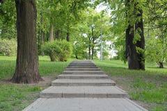 Treppen im Park Stockbild