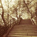 Treppen im Park, Budapest in der goldenen Farbe lizenzfreies stockbild