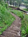 Treppen-Weise zum Park Lizenzfreie Stockfotografie