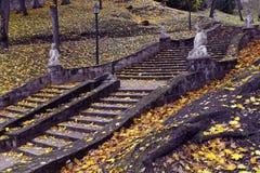 Treppenhaus in einem Herbstpark Stockbilder