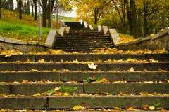 Treppenhaus im Park Stockfotografie