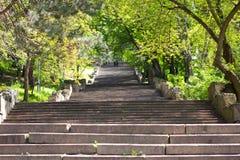 Treppenhaus im Park Stockfotos