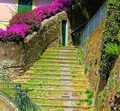 Treppenhaus mit grünem Moos und rosa Blumen Lizenzfreies Stockfoto