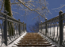 Treppenhaus am Nachtwinterpark stockbild