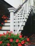 Treppenhaus und Blumen Lizenzfreies Stockfoto